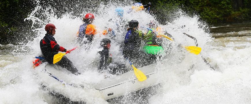 Raft Paddles